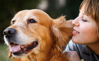What You Should Know Before Bringing Your Pet